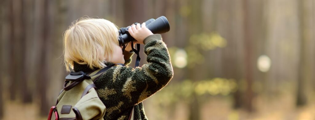 things to do bird watching
